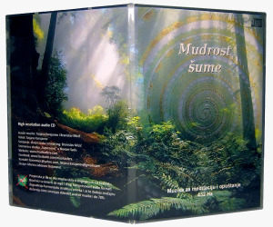 CD MUDROST SUME 432 HZ
