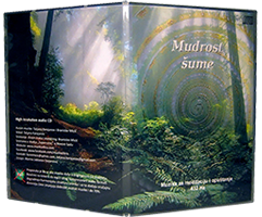 MUDROST ŠUME 432 HZ CD